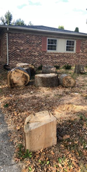 Free fire wood for Sale in Lexington, KY