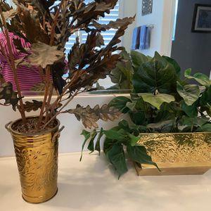 Fake Plants for Sale in Corona, CA