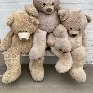 Big Bears- 50 Each for Sale in Albuquerque, NM