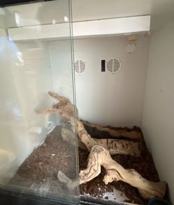 Reptile Enclosure For Sale for Sale in Carson,  CA