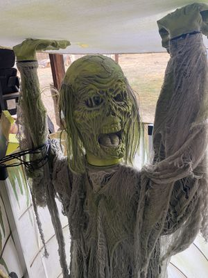 Toxic zombie for Sale in Fresno, CA