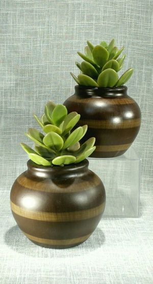 """2pc. Ceramic Vases with Artificial Succulent/Cacti/Cactus 8""""x5"""" *PICKUP ONLY* home decor, household, flowers for Sale in Mesa, AZ"""