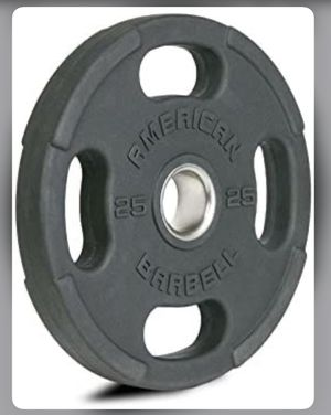 Weights plates (two 25lb plates) for Sale in College Park, MD