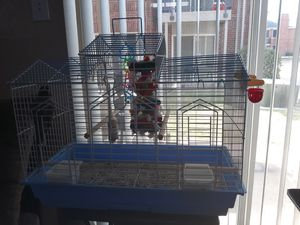 Medium bird cage and parrot perch stand for Sale in Grand Prairie, TX