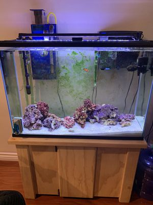 Tank and stand only 50 gallons aquarium with solid wood stand for Sale in Fountain Valley, CA
