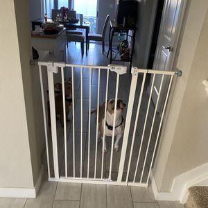 41 Inch Dog Gate for Sale in Miami, FL