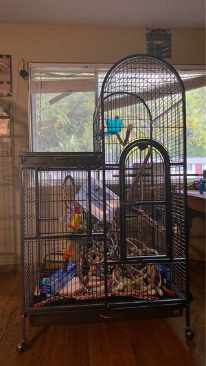 Parrot cage for Sale in Florissant, MO