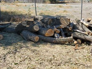 FREE WOOD for Sale in Stockton, CA