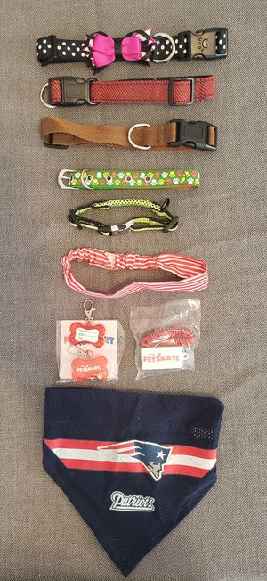Dog collars and accessories for Sale in Pawtucket, RI
