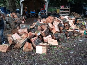 FIREWOOD!! by the bundle... truck load...or by the chord. YOU MUST PICK UP! SORRY NO DELIVERIES!! for Sale in Federal Way, WA