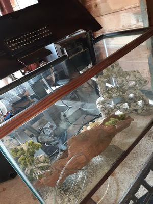 Fish tank for Sale in Houston, TX
