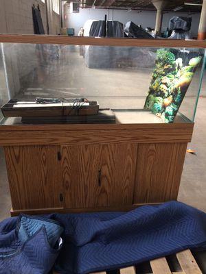 "48' x 48"" x 13"" Fish tank & Base for Sale in Des Plaines, IL"