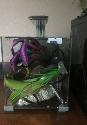 2.5 Gallon Cube Fish Tank for Sale in San Marcos, CA