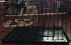 You & Me bird cage for Sale in Santa Clara, CA