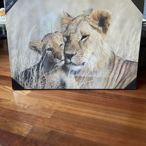 Lion And Lioness for Sale in Chicago, IL