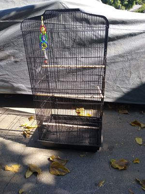 """36"""" Black Large Bird Cage with Wood Perches for Sale in North Highlands, CA"""