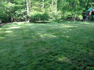AG lawncare for Sale in Sterling, VA
