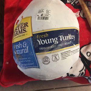 Free Turkey for Sale in Oakland, CA