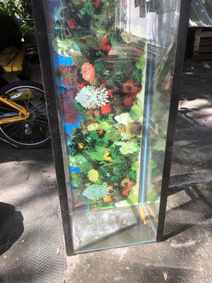 50 Gallon Fish Tank for Sale in Winter Haven, FL