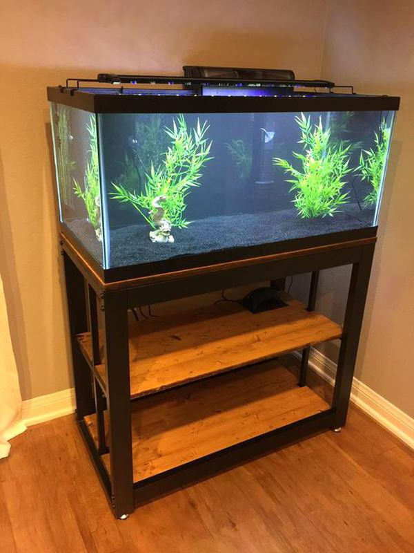 40 Gallon Aquarium