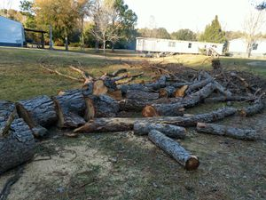 Free Firewood for Sale in Milton, FL