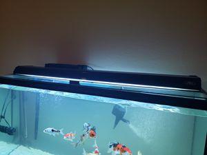 JBJ Aqua lighting for aquarium tank for Sale in Corona, CA
