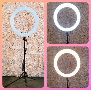 "💥💥NEW 19"" LED Ring Light with Tripod Stand- Dimmer- Phone adapter💥💥 for Sale in Chino, CA"