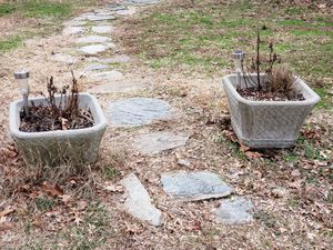 Set of 2 cement planters for Sale in Fairfax, VA
