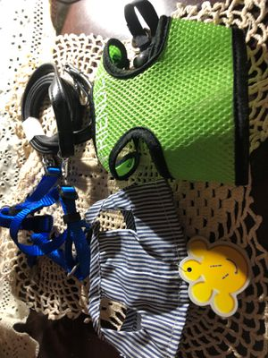 Under 5lbs dogs leash and harness for Sale in Fountain Inn, SC