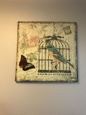Bird cage canvas 23 1/2 X 23 1/2 for Sale in Garden Grove, CA