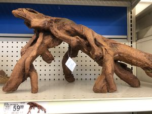 Aquarium Tree Root for Sale in Ithaca, NY