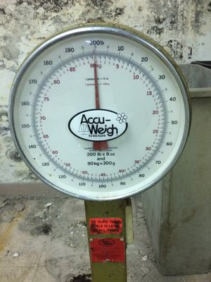 Kitchen scale for Sale in Columbia Station, OH
