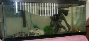 Fish tank for Sale in Oxon Hill, MD