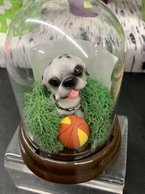Bubble head dogs (gift ideas for all occasions and all ages) for Sale in Renton, WA