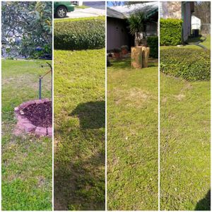 Gardening and Yard Service for Sale in Austin, TX
