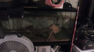Selling a 55 gallon fish tank I'm asking $150.00 for Sale in Philadelphia, PA