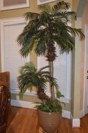 Artificial Palm Tree for Sale in Alpharetta, GA