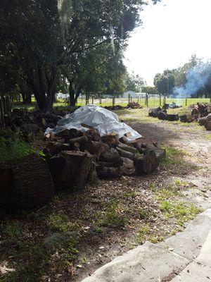 Fire wood for Sale in Lakeland, FL