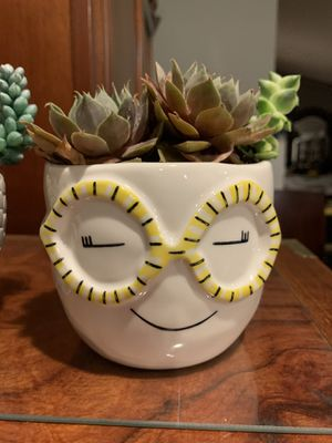 """""""BRAINY ZADIE"""" CERAMIC VASE WITH SUCCULENTS for Sale in Woodland Hills, CA"""