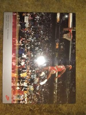 Michael Jordan artwork for Sale in Tampa, FL