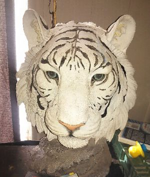 White Tiger status (posting for little sister) for Sale in Casa Grande, AZ