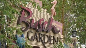 Busch Gardens tickets for Sale in Tampa, FL