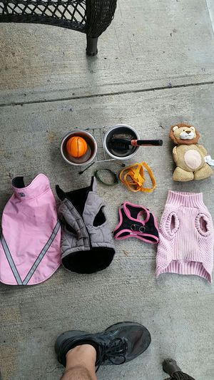 3 XS dog coats, harness, collar, leash, double bowl and toys. for Sale in New York, NY