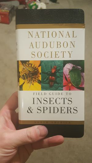 Insect and spider field guide for Sale in Richland, WA