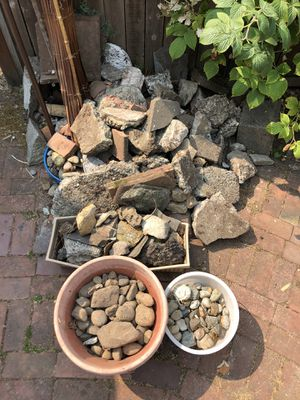 Free outdoor variety of rocks. for Sale in Tacoma, WA