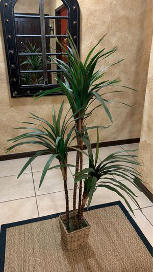 Fake Palm Plant for Sale in Longwood, FL