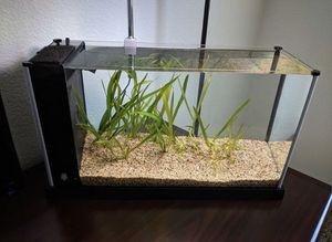 Fluval 5 Gallon Aquarium for Sale in Manassas, VA
