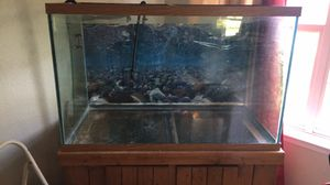 150 tank ,stand and etc for Sale in Chesapeake, VA