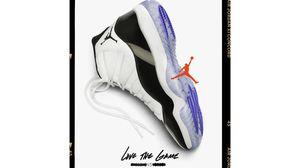 Jordan Concords: Size 11 for Sale in Chicago, IL