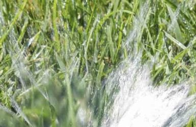 Sprinkler System And Repair for Sale in Houston,  TX